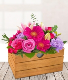 Scented Pink Arrangement
